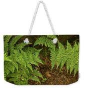 Fern Garden Weekender Tote Bag