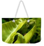 Fern Leaves Weekender Tote Bag