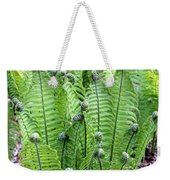 Fern Meet And Greet Weekender Tote Bag