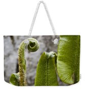 Fern Study At Blarney Castle Ireland Weekender Tote Bag