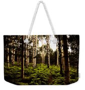 Ferns And Aspen Weekender Tote Bag