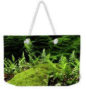 Ferns And Moss On The Ma At Weekender Tote Bag