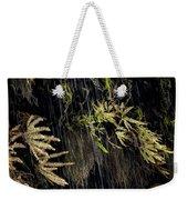 Ferns Below Falls By Jean Noren Weekender Tote Bag