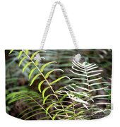 Ferns In Natural Light Weekender Tote Bag