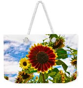 Field Day Weekender Tote Bag
