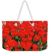 Field Of Brilliant Red Tulip Flowers In A Garden Weekender Tote Bag