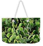 Field Of Cactus Paddles Weekender Tote Bag