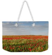 Field Of Red Poppy Anemones Late In Spring  Weekender Tote Bag