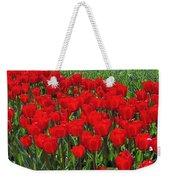 Field Of Red Tulips Weekender Tote Bag