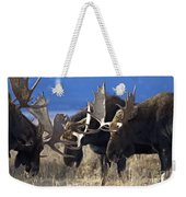 Fighting Moose Weekender Tote Bag
