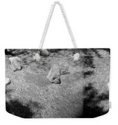 Figurative Holga Tryptich 4 Weekender Tote Bag by Catherine Sobredo