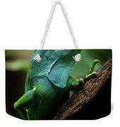 Fiji Iguana In Profile On Tree Branch Weekender Tote Bag