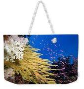 Fijian Reef Scene Weekender Tote Bag