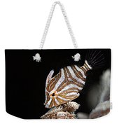 File Fish Weekender Tote Bag