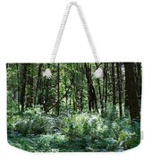 Filtered Forest Sunlight In Oregon Weekender Tote Bag