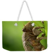 Final Instar Of A Cicada Emerging From The Ground To Molt On A L Weekender Tote Bag