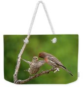 Finch Feeding Time I Weekender Tote Bag
