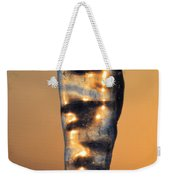 Fire And Ice 8 Weekender Tote Bag