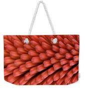 Firecracker Weekender Tote Bag