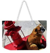 Fireplug Bulldog Weekender Tote Bag