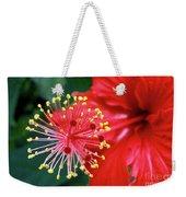 Fireworks - Hibiscus Weekender Tote Bag