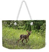 First Baby Fawn Of The Year Weekender Tote Bag