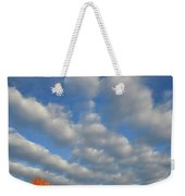 First Light On Glacial Park Sugar Maples Weekender Tote Bag