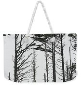 First Line Trees Along The Pacific Ocean Weekender Tote Bag