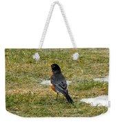 First Robin Of Spring Weekender Tote Bag
