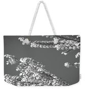 First Signs Of Spring V Weekender Tote Bag