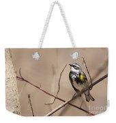 First Warbler Back Yellow Rumped Warbler Weekender Tote Bag