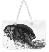 Fish 31 Weekender Tote Bag