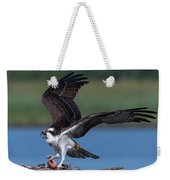 Fish For The Osprey Weekender Tote Bag by Cindy Lark Hartman