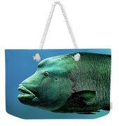 Fish Lips Weekender Tote Bag