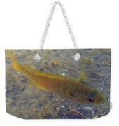 Fish Sandy Bottom Weekender Tote Bag