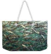 Fishes Weekender Tote Bag