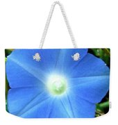 Five Point Star Morning Glory  Weekender Tote Bag