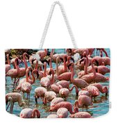 Flamboyance Of Flamingos Weekender Tote Bag