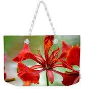 Flamboyant Beauty Weekender Tote Bag