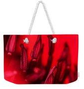 Flaming Poppy Detail Weekender Tote Bag