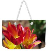 Flaming Tulips Weekender Tote Bag