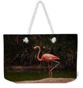 Flamingo 1 San Diego Zoo Weekender Tote Bag