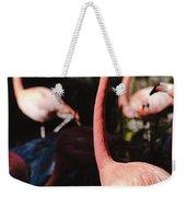 Flamingo 3 Weekender Tote Bag