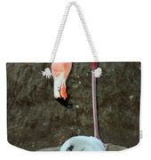 Flamingo And Chick Weekender Tote Bag