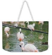 Flamingo Bath  Weekender Tote Bag