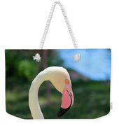 Flamingo Closeup Weekender Tote Bag