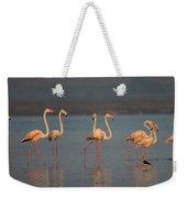 Flamingo During Sunset Weekender Tote Bag