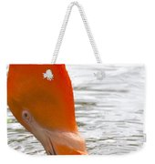 Flamingo Feeding Weekender Tote Bag