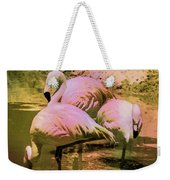 Flamingo - Id 16217-202804-4625 Weekender Tote Bag