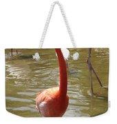 Flamingo II Weekender Tote Bag